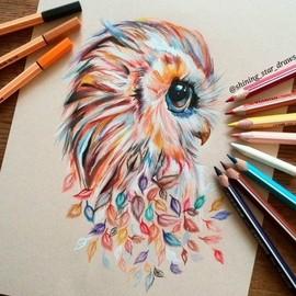 Милая разноцветная сова